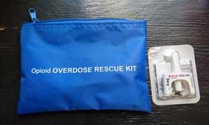 Naloxone overdose reversal kit